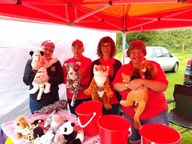 Lion South Downs Stall 2019